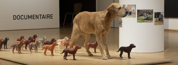 Opgezette hond met miniatuur beelden van honden ernaast